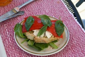 goat cheese, tomato and arugula salad sandwich