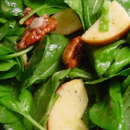 spinach-apple-and-pecan-salad-2